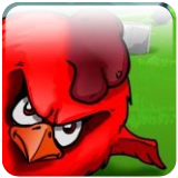Crazy Birds App